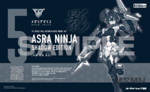 asra_ninja_shadow_00