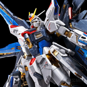 rg-strike-freedom-gundam-titanium-finish (1)