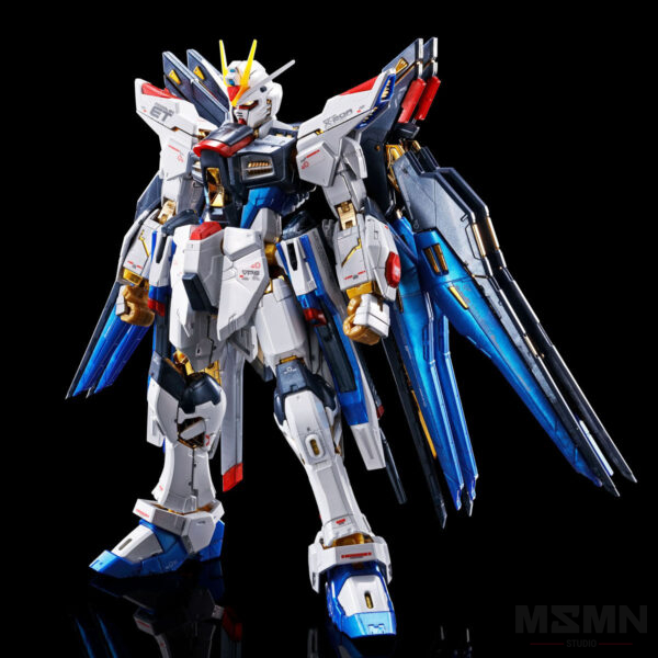 rg-strike-freedom-gundam-titanium-finish-2