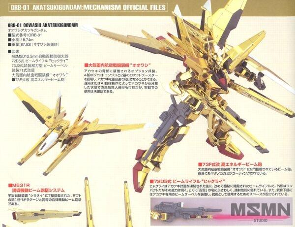 hg_100_akatsuki_gundam_01